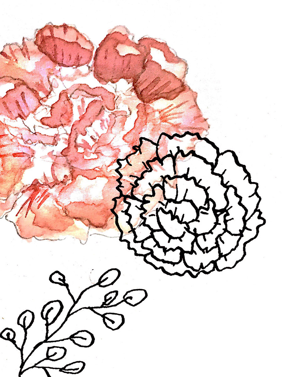 Watercolored Flower and Inked Carnation and Leaves