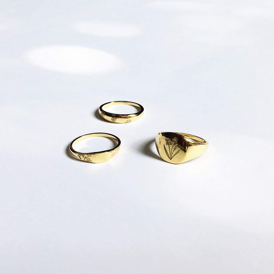 Signet rings for Dandy Ona Jewelry